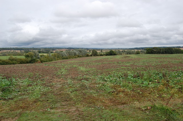 Land off Maytham road