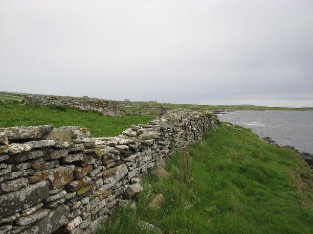 Dry stone wall near Berriedale