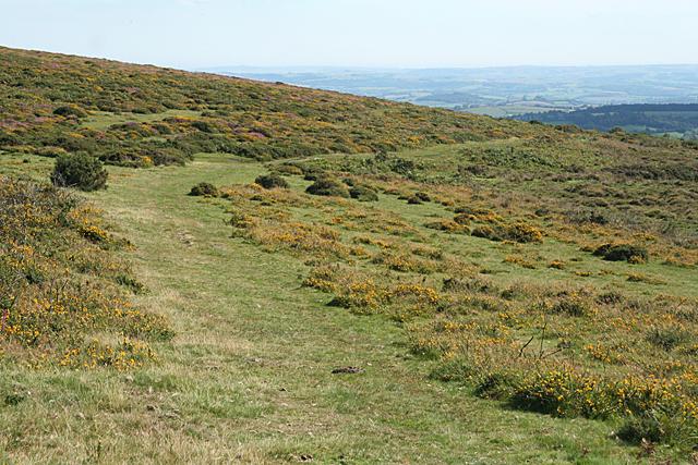 Ilsington: track leading to Bag Tor