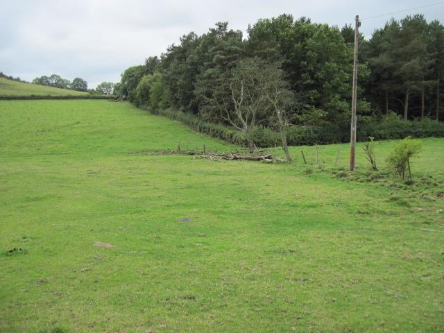 Flatt Plantation
