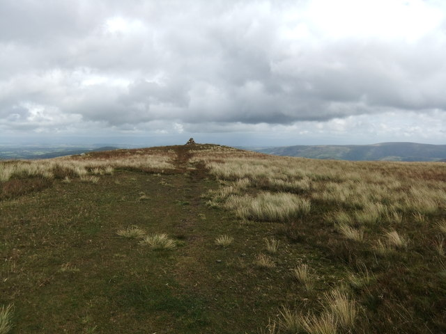 On Birkett Fell