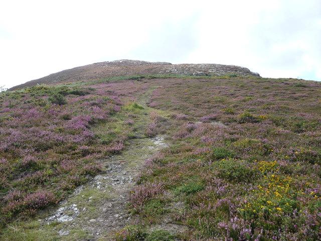 Path up the north-east corner of Yr Arwydd