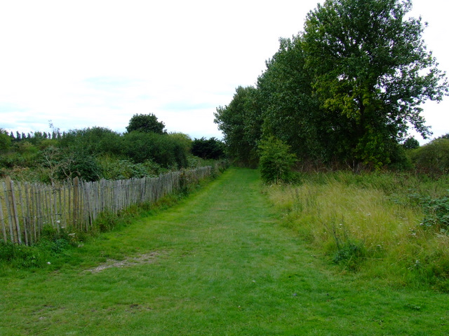 Path in Elthorne Park