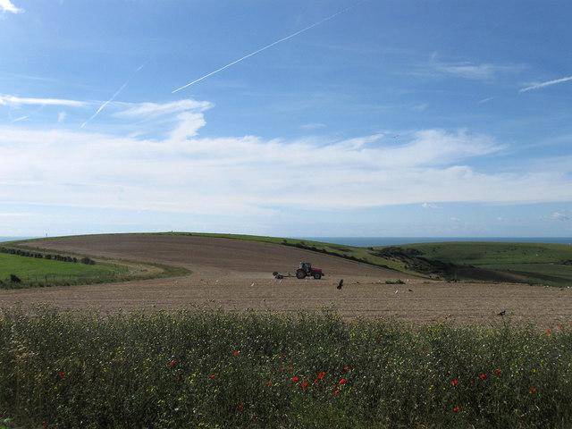 Looking Towards Mount Pleasant