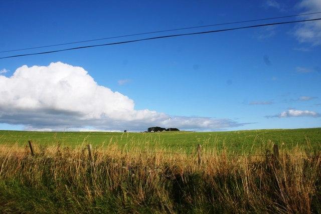 Field by Hillhead
