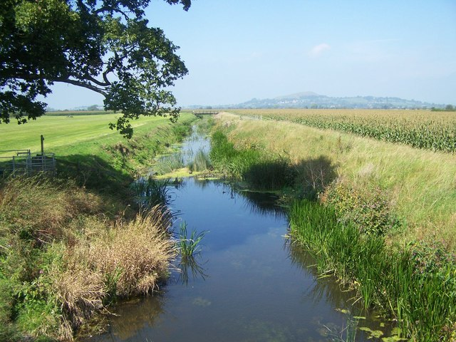 River Brue from Wallyer's Bridge