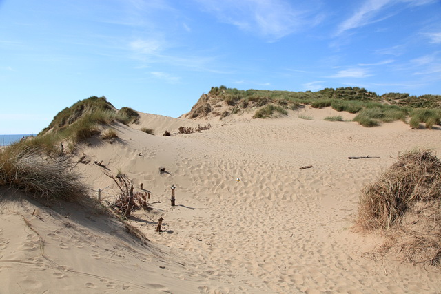 Sand dunes at Formby Point