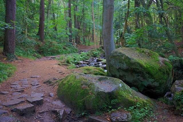 Boulders, May Beck