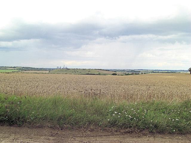 Arable land beside Halfpenny Lane