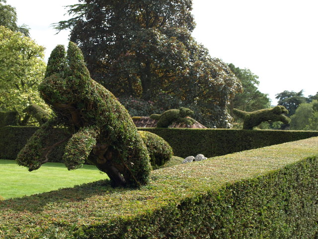 Topiary, Knightshayes Court