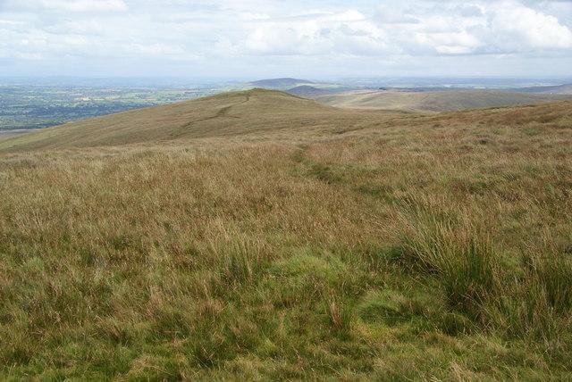 The Preseli ridge from Pen Cisty