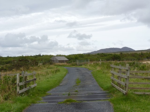 Cattle grid and barn near Kilennan River, Islay