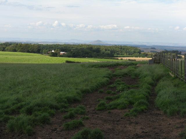 Fields between Deuchrie and Woodend