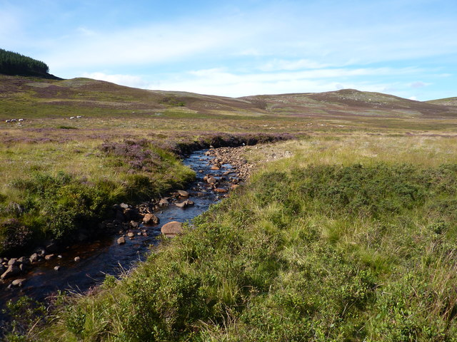 Looking up the Crathie Burn