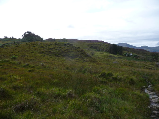 Upland landscape near Hafod Owen and Bryn Castell