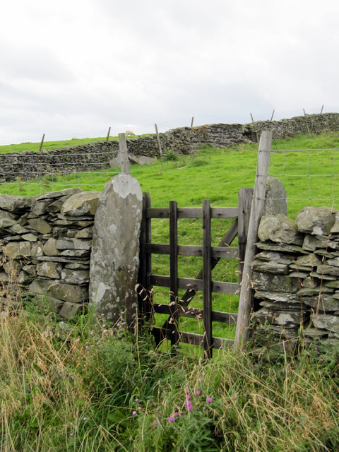 Small field gate alongside Goat Lane