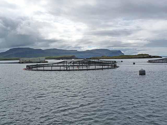 Fish farm off Geasgill Mòr