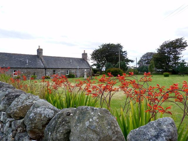 Cottages at Strathsteven