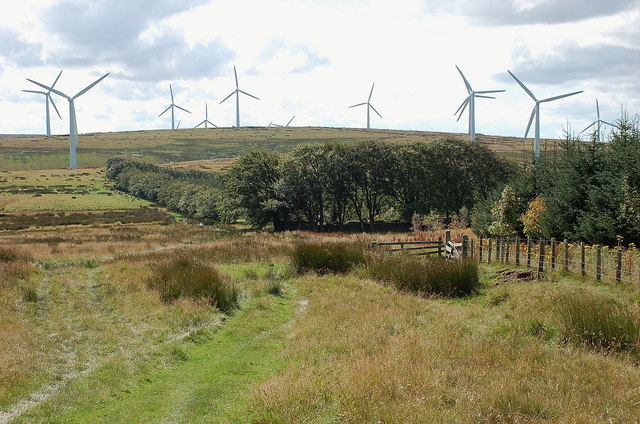 Black Hill wind farm from Commonside