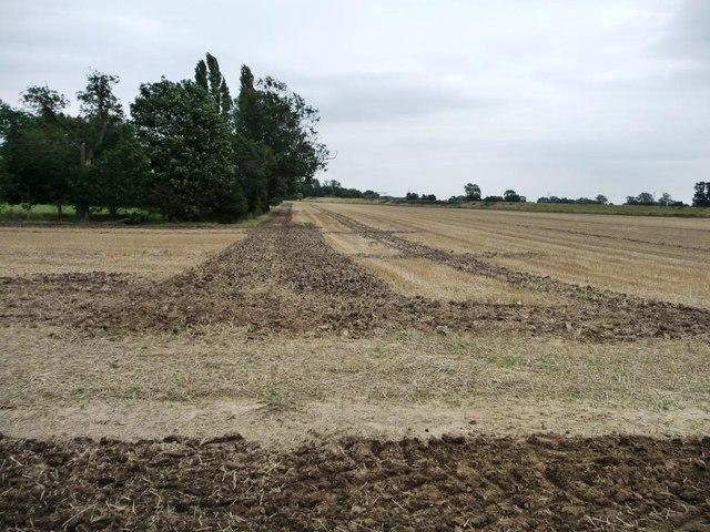 Stubble field alongside the River Aire