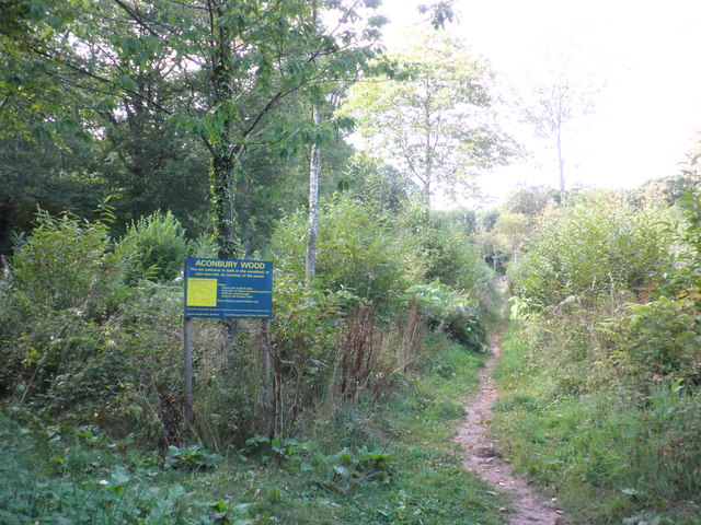 Entrance path, Aconbury Wood