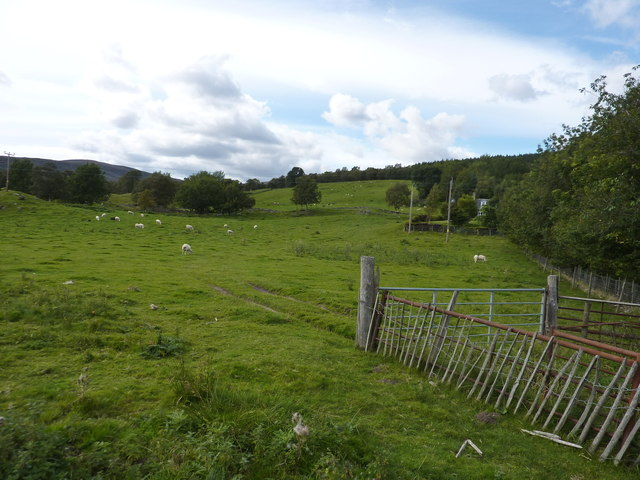 Field adjacent to the A93, across the River Dee from Balmoral