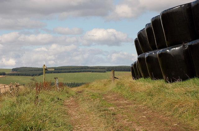Signpost and bales, Southern Upland Way