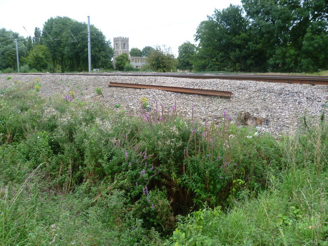 Lineside at Offord Cluny