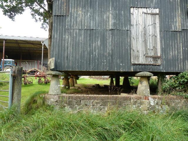Mushroom supports for old granary barn at Chithurst Farm