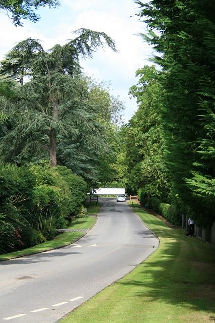 Queen's Drive