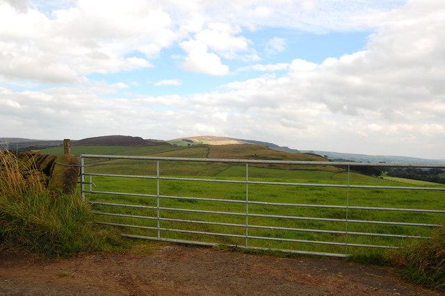 View through a gate
