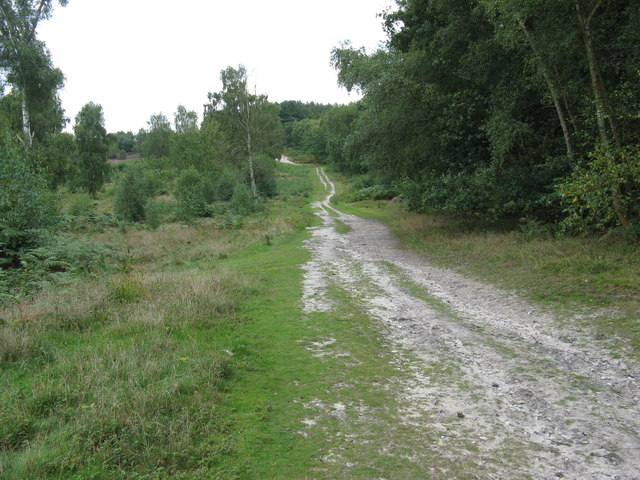 The Serpent Trail SW on the edge of Trotton Common