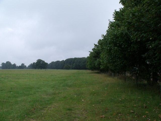 Apple Plantation and Deer Park