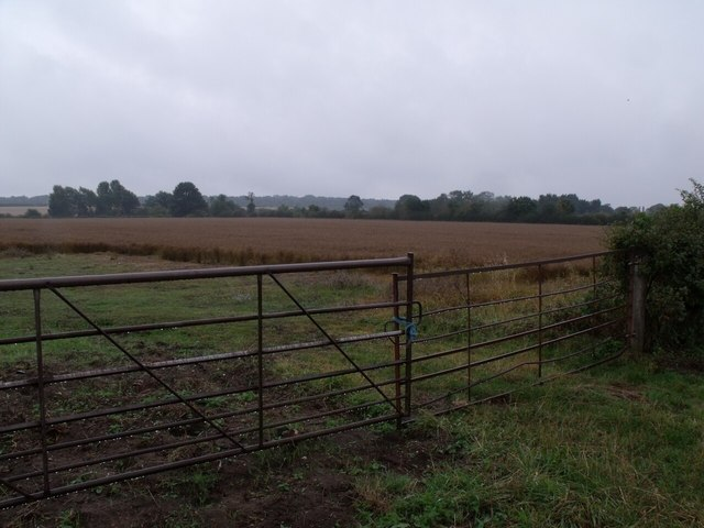Wet Crop Field and Gates