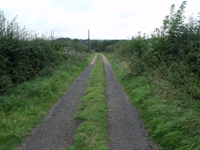 Track to Horncastle Canal off A153
