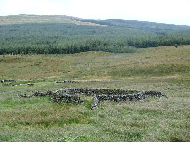 Sheepfold near Holmhead