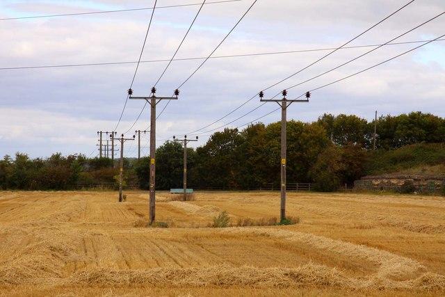 Poles in the field