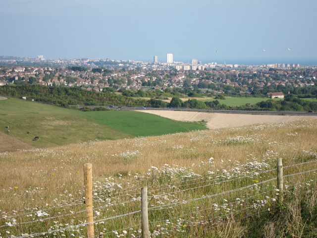 Farmland near Foredown Hill