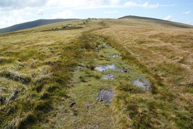 Soggy path by Mynydd-bach