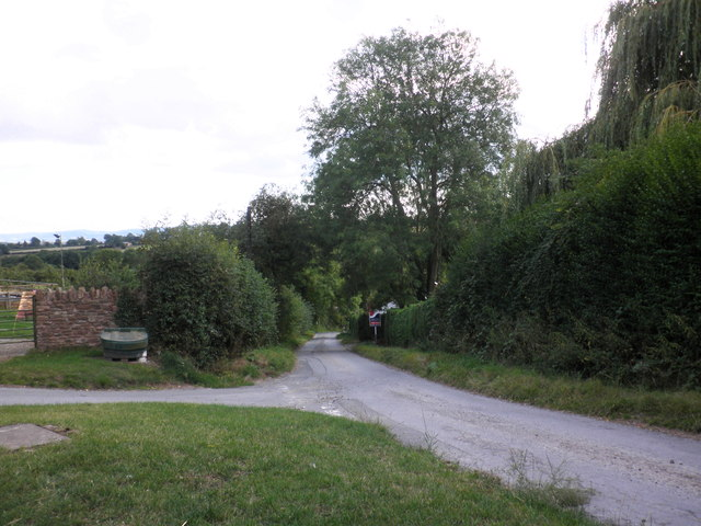 Lane to Much Birch