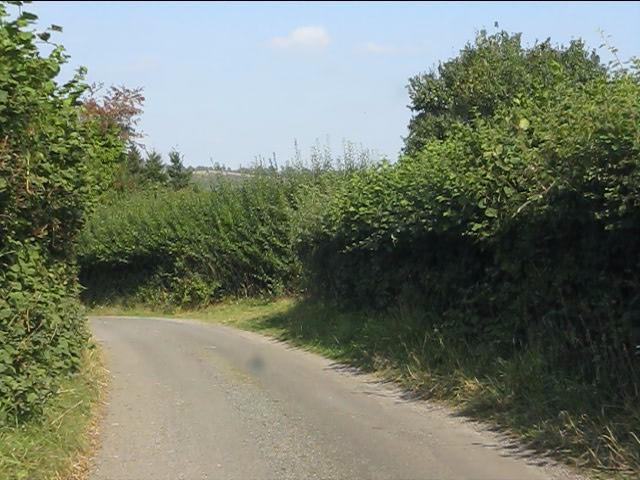 Lane west of Lingen