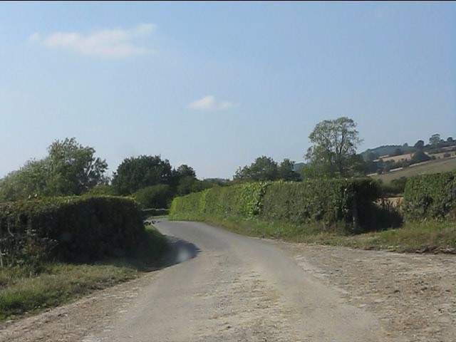 Lane at the entrance to Letchmoor Farm