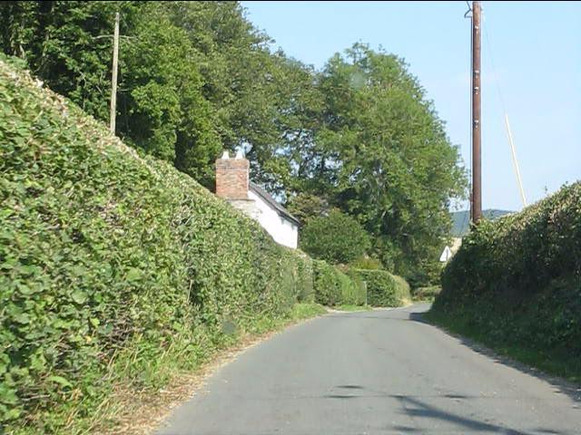 Cottage on the lane to Stapleton