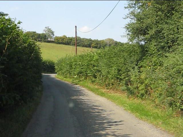 Lane near Birches Wood