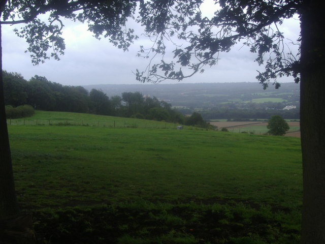 View from the Nower