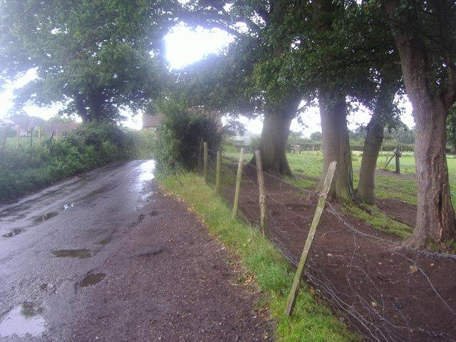 The Nower, near Brasted