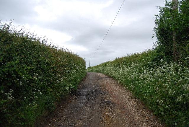 Wyckham Lane