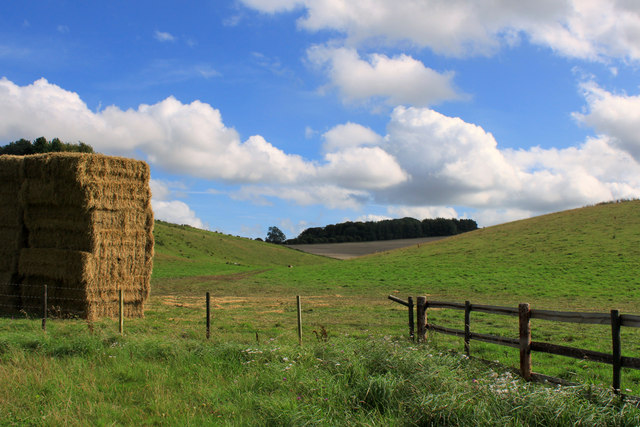 2011 : Strawstack and a dry valley