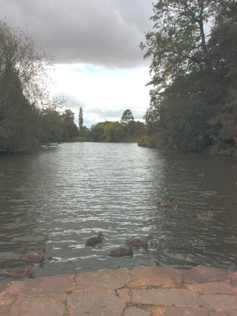 The Lake, Elsham Hall