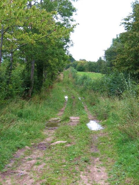 Bridleway at Ashley Hill